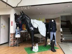 乗馬クラブクレイン神奈川2
